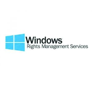 MICROSOFT - [Windows Rights Mgmt Services CAL] WinRghtsMgmtSrvcsCAL WinNT SA OLP NL Gov UsrCAL [Pemerintah]