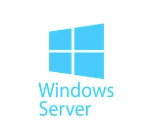 MICROSOFT - [Windows Server CAL]WinSvrCAL 2019 OLP NL Gov UsrCAL[Pemerintah]